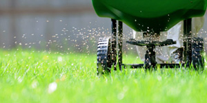 JMC Property Management , LLC from Wanamingo, MN offers a wide range of lawn care services that includes lawn fertilizing service.